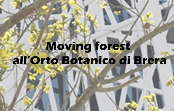 MOVING FOREST- IN THE BOTANICAL GARDENS OF BRERA
